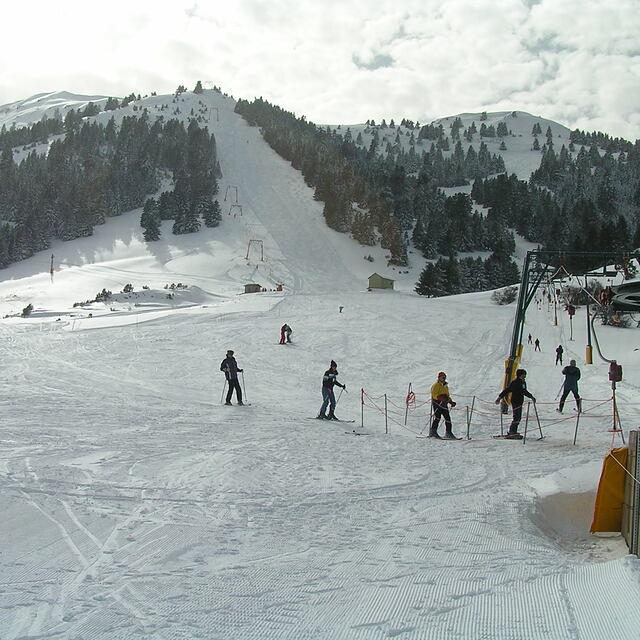 mainalo 2005