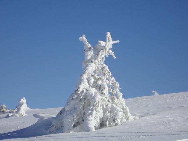 snow art 2, Kartalkaya