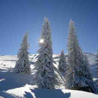 Jahorina winter