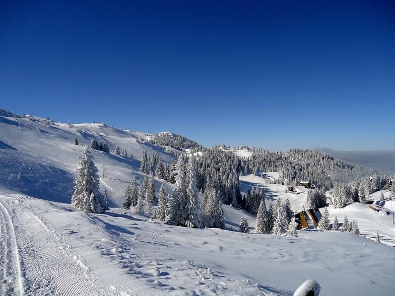 Jahorina winter