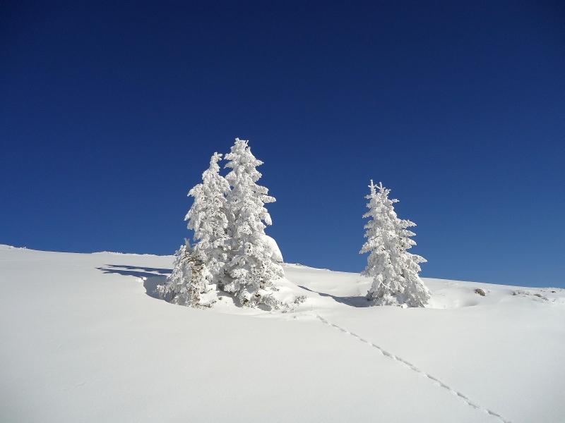 Snow art at Jahorina