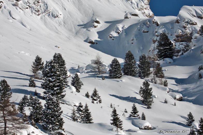Freeriding, one powder day - Dolomiti.com.au - Italy, Canazei