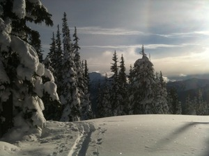 Off Piste Grassy, Manning Park Resort photo