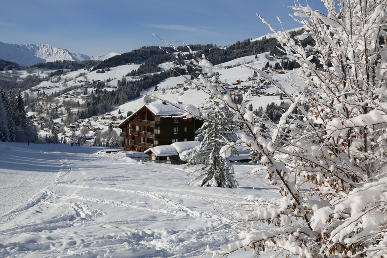 Chalet 4 Freres, Les Gets