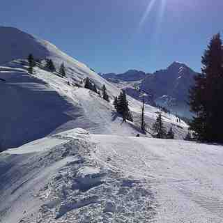 Chatel Snow: Chatel Jan 2013