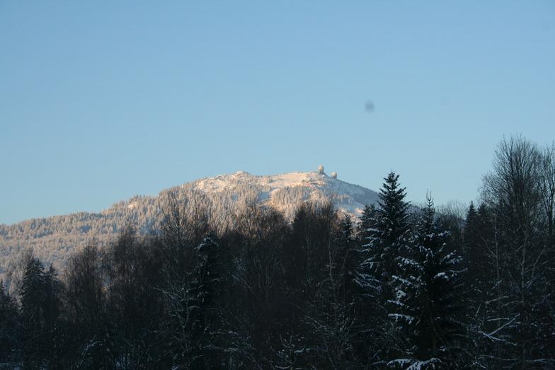 Arber snow