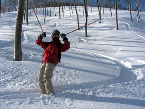 tree run, Madarao Kogen photo