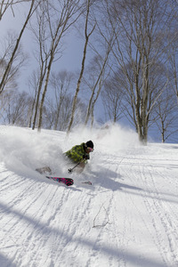 deep powder, Madarao Kogen photo