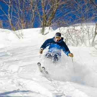 deep powder, Madarao Kogen