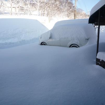 deep snow, Madarao Kogen