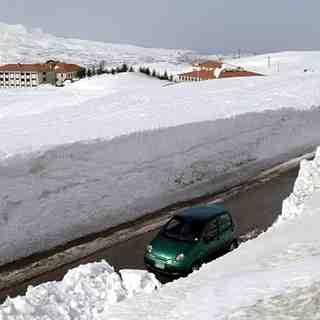 Cedars area,lebanon