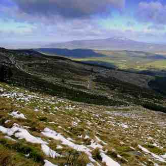 Northern slopes,Knockanaffrin ridge,Comeragh mts., Knockanaffrin (Comeragh Mts)