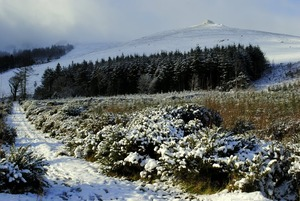 Knocksheegowna,Knockanaffrin ridge., Knockanaffrin (Comeragh Mts) photo