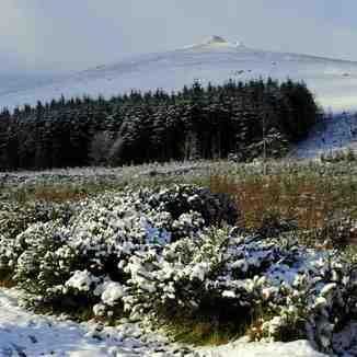 Knocksheegowna,Knockanaffrin ridge., Knockanaffrin (Comeragh Mts)