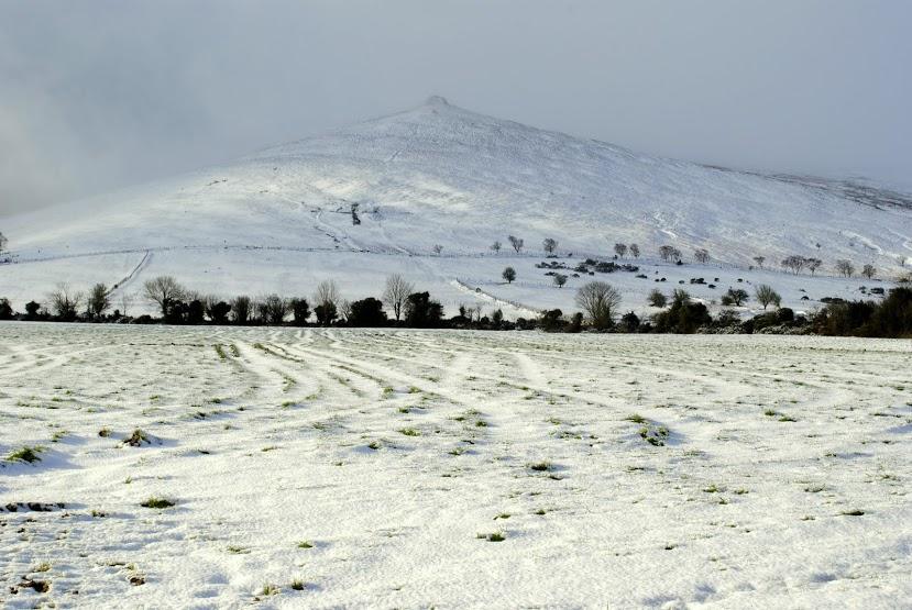 Knocksheegowna slope,Knockanaffrin ridge., Knockanaffrin (Comeragh Mts)