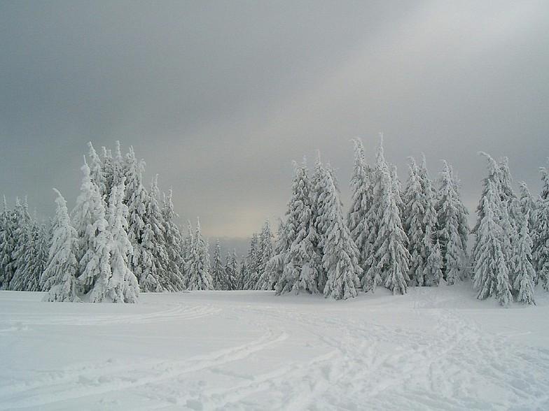 Pamporovo,BG