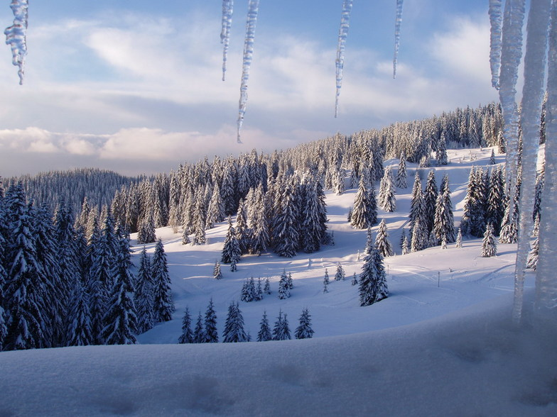 Pamporovo snow