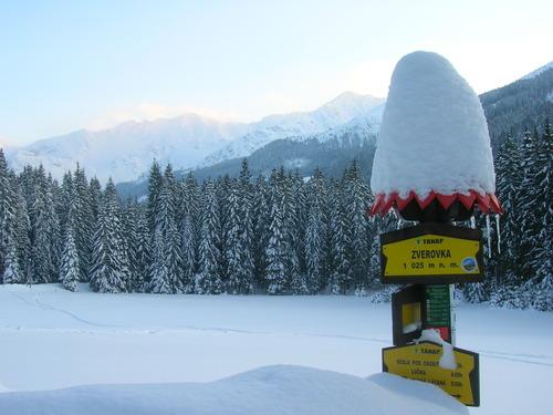 Roháče - Zverovka/Spálená dolina Ski Resort by: Jacek