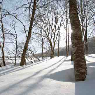 Knee deep and untouched !, Hakuba 47