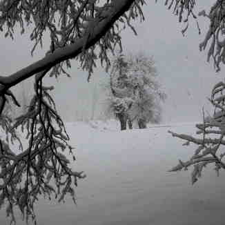 A White Out, Samoens