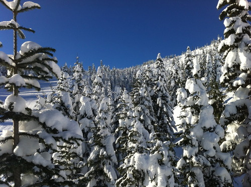 Sasquatch Mountain Resort Ski Resort by: local rider
