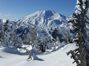 Bachy!, Mt Bachelor photo