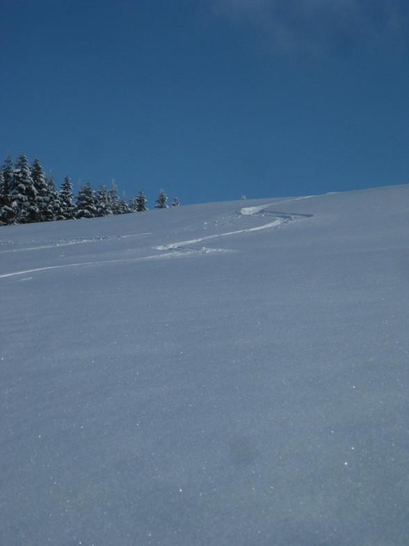 Fresh Snow, Todtnauberg