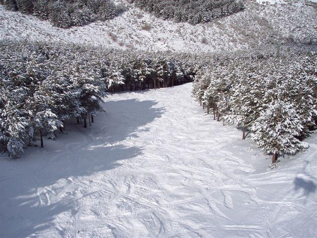 pista el bosque con nieve polvo, La-Pinilla