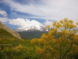 Mount Damavand photo