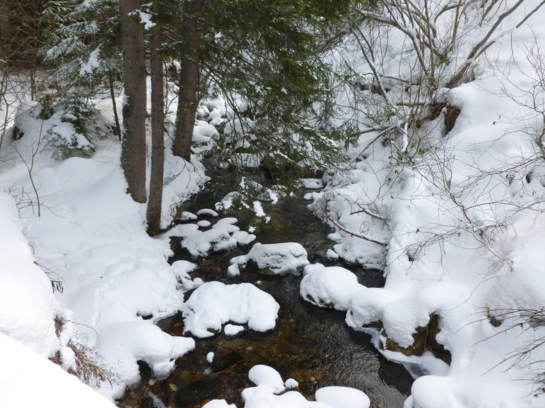 sweet stream forest tour on skinny skis, Borovets
