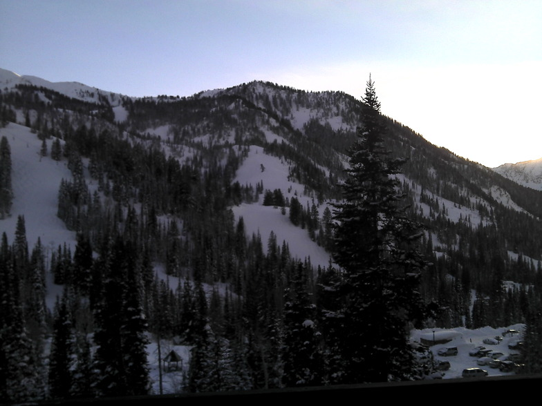 Another Peachy day in the Wasatch Mtns. Utah, Alta