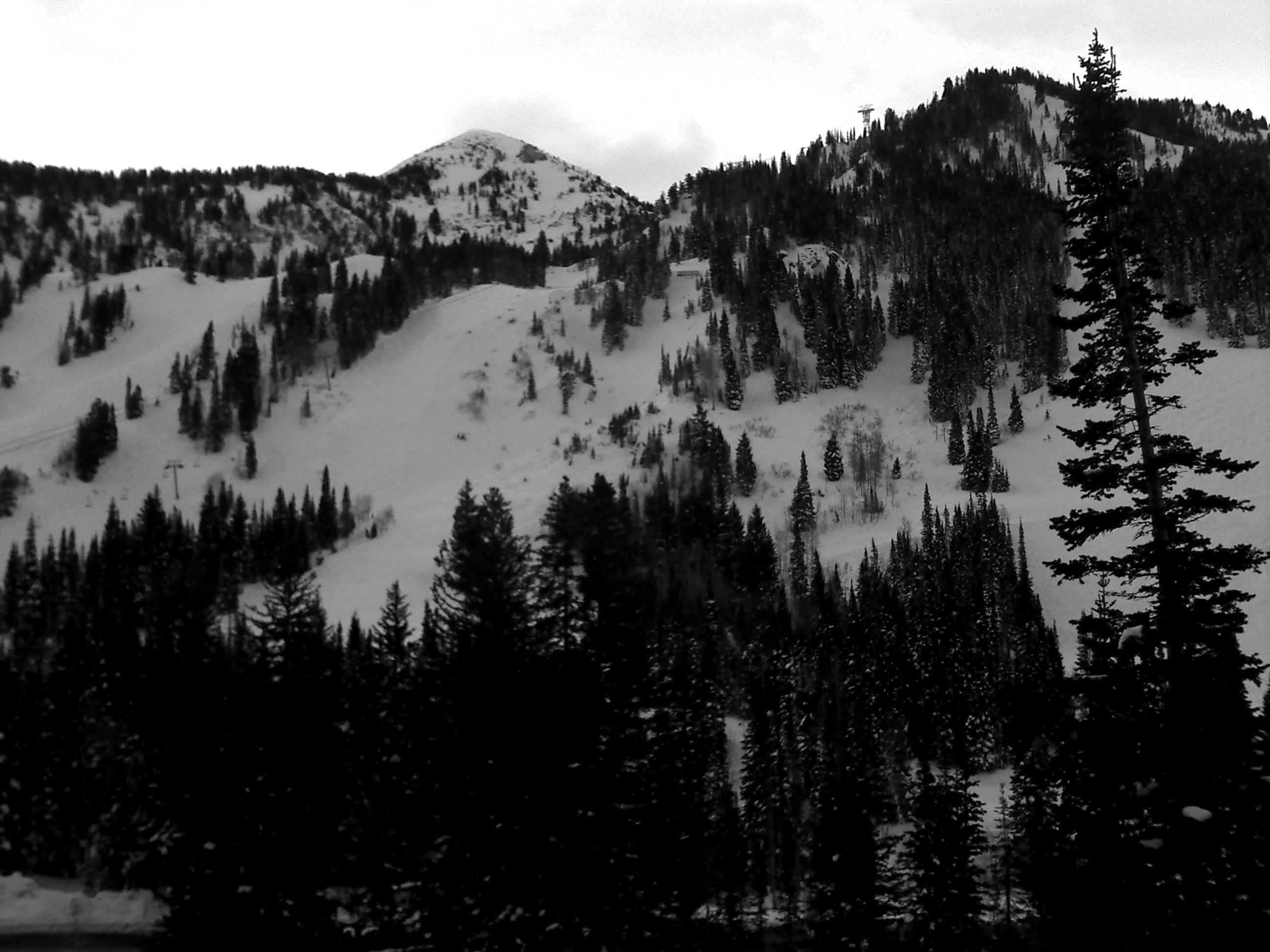 Snowbird ski area utah