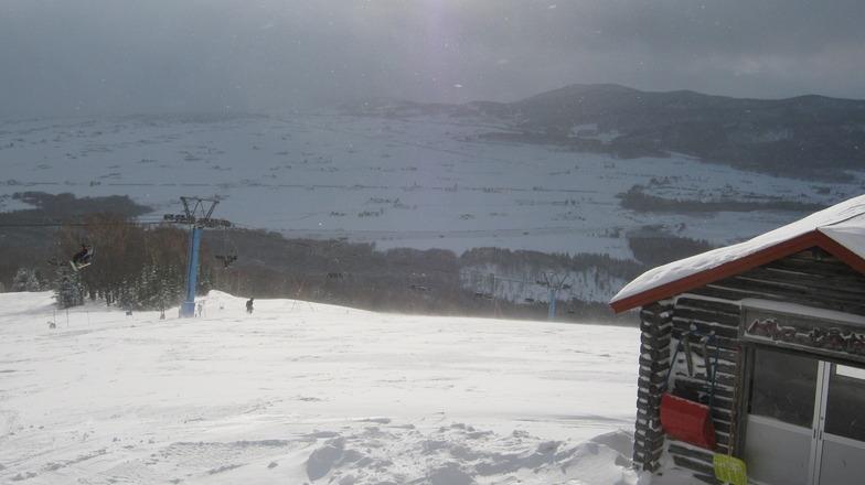 Pippu snow