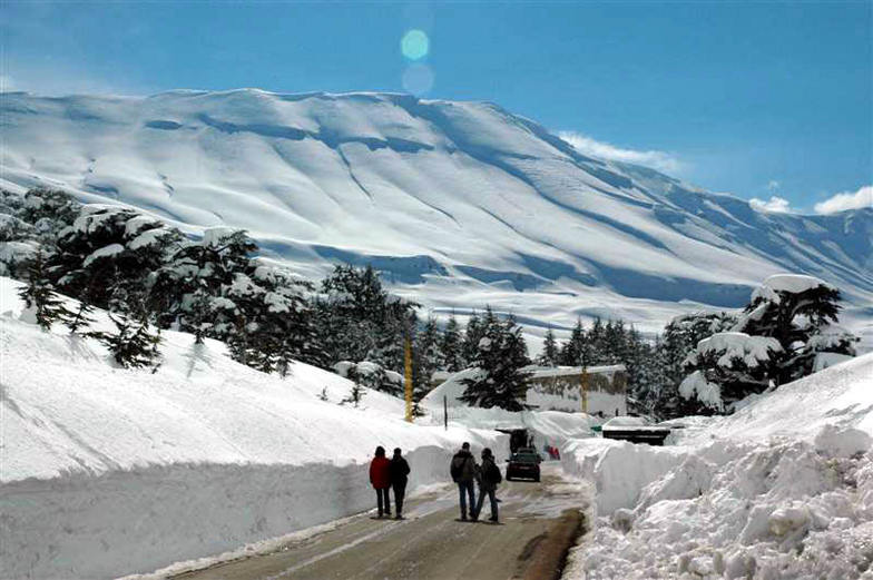 Cedars, north Lebanon