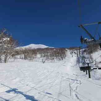 Nice snow, Niseko Annupuri