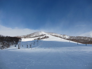 piste & off piste, Niseko Moiwa photo