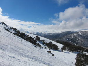 Off piste, Falls Creek photo