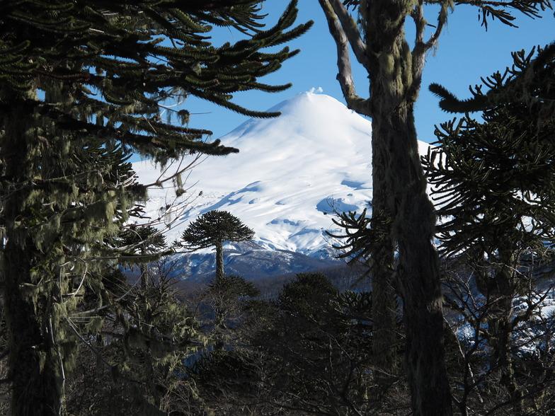 Villarrica Volcanoe, www.lobosadventure.com, Villarrica-Pucon