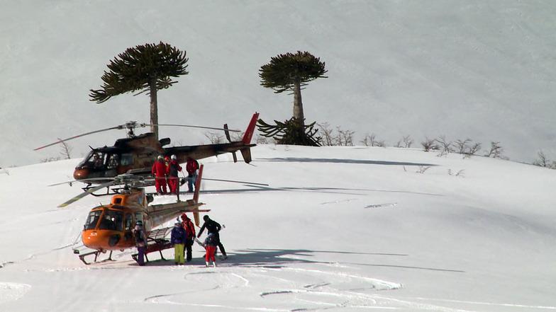 Heli Ski Araucania