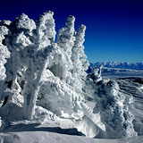 Mammoth Mountain Summit Jan 2005, USA - California