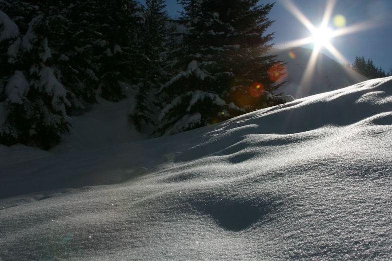 Untouched snow!, Courchevel