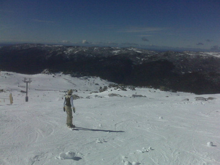 Blue Bird - Thredbo AU