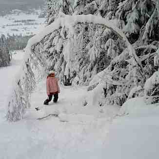 Powder Day in Norway, Trysil