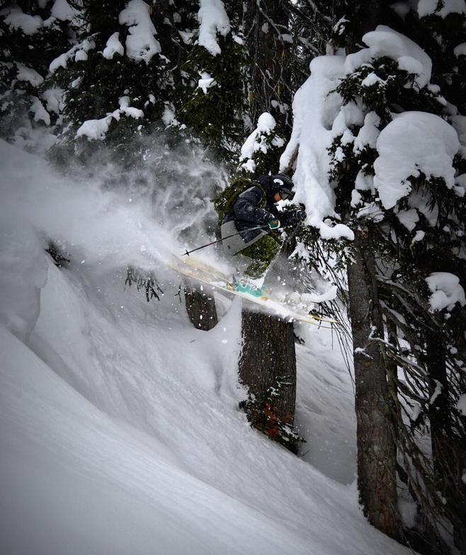 Paradise Powder, Revelstoke Mountain Resort