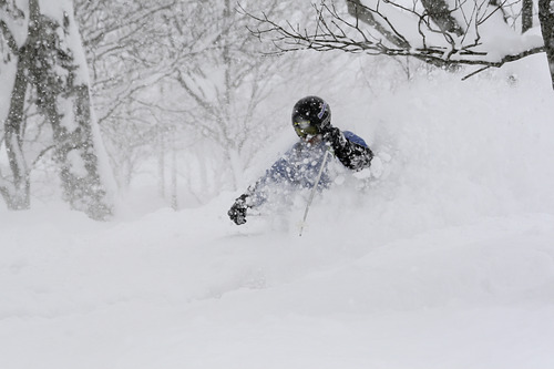 Niseko Grand Hirafu  Resort Guide