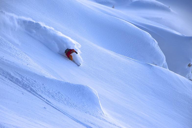 puntanera, Cortina