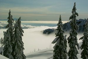 Vancouver fog, Mount Seymour photo