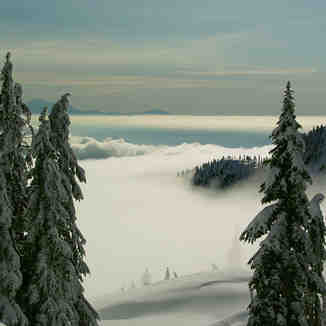 Vancouver fog, Mt Seymour