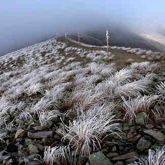 اولین برف, Tochal