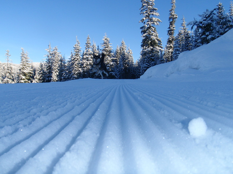 Snow Fun, Ski Callaghan